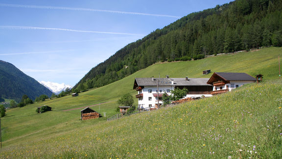 Impressions, Omesberger Hof in Neustift – a holiday in the Stubai Valley in Tyrol
